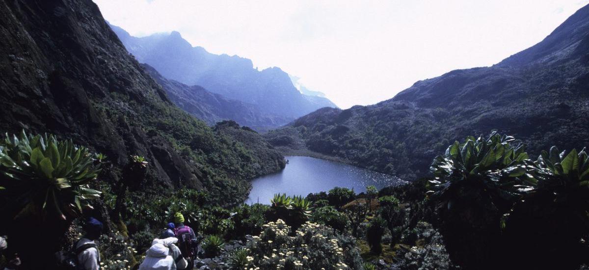 Kitandara (4027m) - Freshfi eld Pass (4282m)