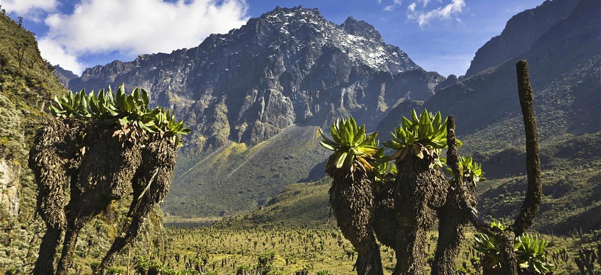 Nyakalegija (1615m) - Nyabitaba Hut (2651m)