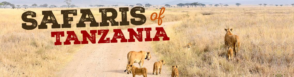 Fravan Safaris